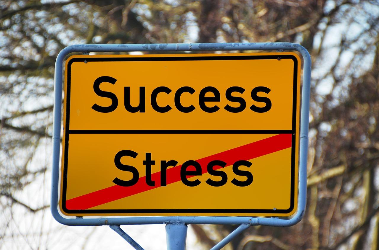 Straßenschild, welches den englischen Begriff Success und den deutschen, durgestrichenen Begriff Stress zeigt um darzustellen, wie Stress mit Kinesiologie besiegt wird.